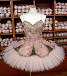tutus and pointe shoes -