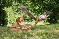 Mit Hund in der Natur in der Hängematte. Freundlich, Outdoor Furniture, Outdoor Decor, Hammock, Camping, Cats, Pet Dogs, Holiday Destinations, Viajes