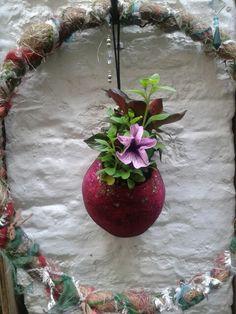 Secret Garden softpots.