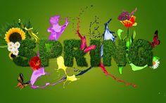 """HELLOOOOOOO  SPRING!!! If you love a flower dont pick it up. Because if you pick it up it dies and it ceases to be what you love. So if you love a flower let it be. Love is not about possession. Love is about appreciation. HOLAAAAAAAAPRIMERA! !! """"Si amas una flor no la cortes porque si la cortas muere y deja se ser lo que amas entonces si amas a la flor déjala ser amar no se trata de posesión si no de apreciación"""" -- Osho #hellospring #holaprimavera #loveis"""