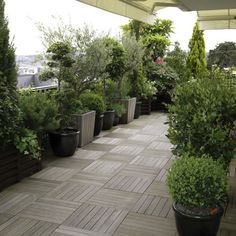 Decorate your terrace with pots Buy seeds and plants from organic farming The typical organic gardener also . Rooftop Design, Terrace Design, Garden Design, Rooftop Terrace, Terrace Garden, Garden Pots, Garden Care, Balcony Planters, Tiny Balcony