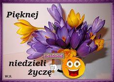 Den, Wreaths, Halloween, Door Wreaths, Deco Mesh Wreaths, Floral Arrangements, Garlands, Floral Wreath, Spooky Halloween