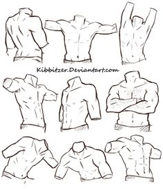 Male Torso Reference Sheet by Kibbitzer on deviantART