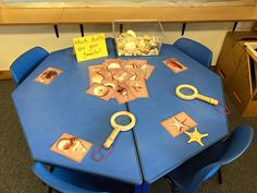Investigating shells as a part of a seaside matter - Travels