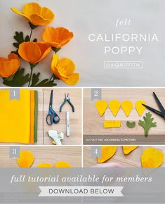 DIY step by step photo tutorial for felt California poppies by Lia Griffith Flower Svg, Flower Template, Flower Crafts, Cactus Flower, Paper Flowers Diy, Felt Flowers, Fabric Flowers, Felt Diy, Felt Crafts