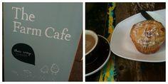 Little Melbourne Kid-friendly favourite cafes