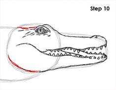 draw-crocodile-10.jpg (500×386)