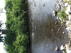 """A small stream by """"The Track"""" in Pingion Forge, Tennessee on a family vacation."""