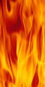 Thousands of brush fires occur each year. Brush fire prevention is not difficult, however, if you know what steps to take and what common mistakes to avoid. Mellow Yellow, Orange Yellow, Orange Color, Fire Prevention, Fire Element, Into The Fire, Fire Art, Orange You Glad, Light My Fire
