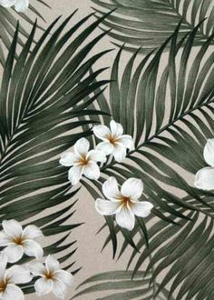 Plumeria Palm Tropical Hawaiian plumeria flowers, barkcloth fabric.  More fabrics at: BarkclothHawaii.com