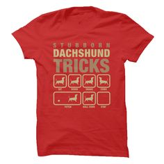 Are You A Dachshund Lover?