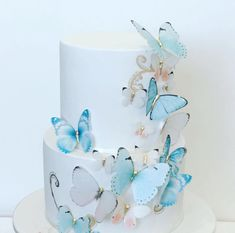 Pink and blue butterfly cake