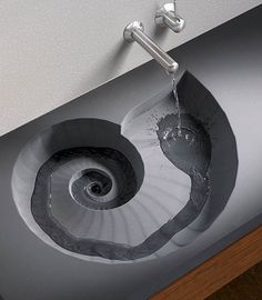 Sweet nautilus sink