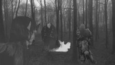 Ragnarök im Waldpark.....