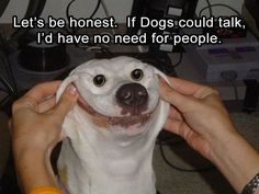 Funny Pictures Of The Day – 35 Pics http://ibeebz.com