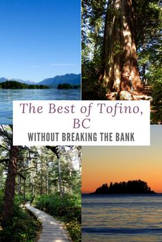 Exploring the natural beauty of Tofino in Canada doesn't have to cost a fortune! Quebec, Montreal, Pvt Canada, Toronto, British Columbia, Columbia Travel, Canadian Travel, Vancouver Island, Family Travel
