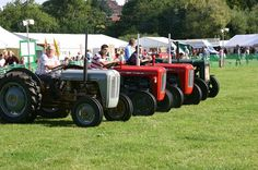 Vintage Display - Tractors at Monmouthshire Show