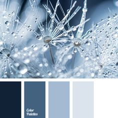 Color Palette #2569