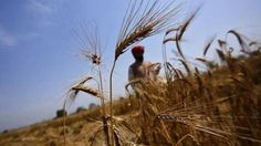 Karnataka govt to waive farmer loans upto Rs. 50,000