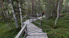 The scenic Eero's Trail - Travel Pello - Lapland, Finland Lapland Finland, Great Lakes Region, Natural Wonders, Garden Bridge, Paths, Trail, Deck, Outdoor Structures, Landscape