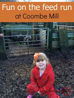 Fun on the feed run at Coombe Mill - Little Hearts, Big Love Big Love, Farmer, Hearts, Running, Holiday, Fun, Outdoor, Racing, Fin Fun