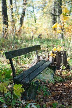 Осенняя скамеечка в Тайцах.