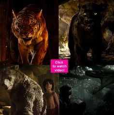 The Jungle Book second trailer: Priyanka Chopra as Kaa Nana Patekar as Shera Om Puri as Bagheera Irrfan Khan as Baloo and Shefali Shah as Raksha will take you back in time!   watch video!