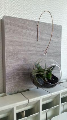 Terrarium bulle suspendu, boule de verre, fil de fer cuivré et etagère