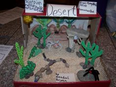 Shoe box dioramas can be used to teach about habitats. Science Projects, School Projects, Projects For Kids, Science Activities, Crafts For Kids, Biology Projects, Stem Science, School Ideas, Desert Ecosystem