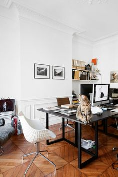 "House tour: a pared-back 19th-century apartment in Paris : The true master of the house can always be found testing the comfort of each chair, table, sofa or gym mat. ""We have a shameless and intrusive cat,"" Sauzay says with a laugh, ""who is something of a legend with our customers — especially when he jumps on their knees and begins to play with layouts in the middle of a meeting."""