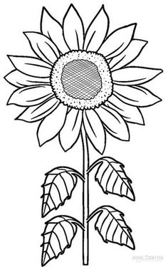 Blooming Sunflower coloring page from Sunflower category