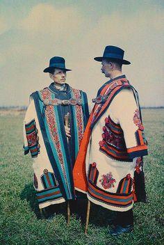 Cowherds wearingcifraszűr, Hungary