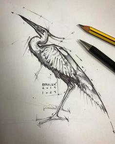 Unique Drawings, Cool Art Drawings, Pencil Art Drawings, Drawing Sketches, Animal Sketches, Animal Drawings, Lowrider Art, Graffiti Painting, Figure Sketching