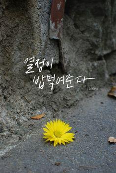 열정 캘리그라피 Calligraphy Letters, Caligraphy, Korean Writing, Rune Symbols, Korean Quotes, Typography Design, Lettering, Korean Words, Event Banner