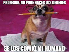 La excusa canina        Gracias a http://www.cuantocabron.com/   Si quieres leer la noticia completa visita: http://www.estoy-aburrido.com/la-excusa-canina/