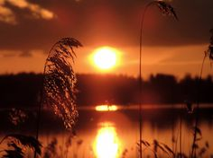Sunset in May - Karlstad, Varmland