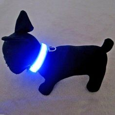 Alfie Couture Pet Accessory - Flashing Pet Safety Collar - Collar Color: Baby Blue - http://coolgadgetsmarket.com/alfie-couture-pet-accessory-flashing-pet-safety-collar-collar-color-baby-blue/