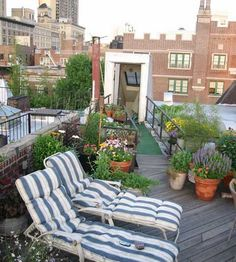garden and hang out area on the roof