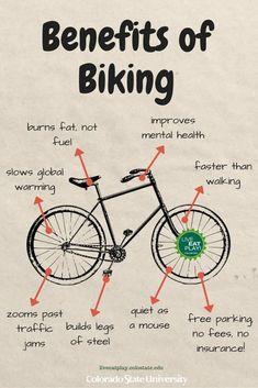 Bike Quotes, Cycling Quotes, Cycling Tips, Cycling Art, Road Cycling, Urban Bike, Buy Bike, Road Bike Women, Learning