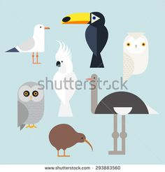 Different birds icons set include seagull, cockatoo, toucan, snowy owl, gray owl, kiwi and the ostrich. Vector illustration isolated on a white background. bird Species