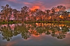 'River Reflections - Murray River, Albury , NSW - The HDR Experience' by Philip Johnson South Australia, Western Australia, Architectural Trees, Australian Photography, Murray River, Reflection Photography, Luxury Homes Dream Houses, Travel Memories, Rivers