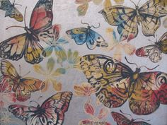 Butterfly Art - David Bromley - Butterflies