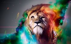 Download Lion CGI Artwork Wallpapers HD