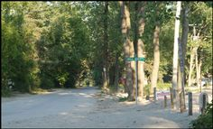 Photograph of roads leading to cottages on Long Point Beach, investment property on the Gold Coast of Ontario, on Lake Erie