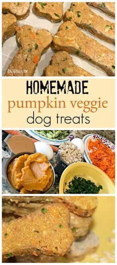 Wholesome, homemade dog treat recipe featuring spinach, zucchini, carrots and pumpkin. Tail-waggin' good!