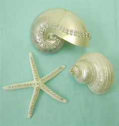 Embellished Shells~love shells, love jewelry~these are perfect~