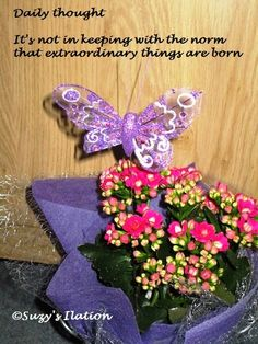 It's not in keeping with the norm that extraordinary things are born  http://suzysomedaysomewhere.blogspot.co.nz/2014/10/five-minute-friday-dare.html