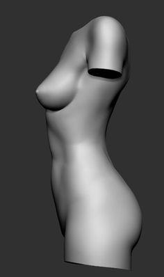 human body parts female torso Human Body Model, Human Body Art, 3d Human, Human Body Anatomy, Body Reference Drawing, Human Poses Reference, Anatomy Reference, Female Reference, Figure Drawing