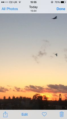Fire sky, fly birds...