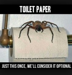 next time I go to the bathroom I'm asking my mom to check